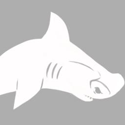 Evoluções Do Tubarão